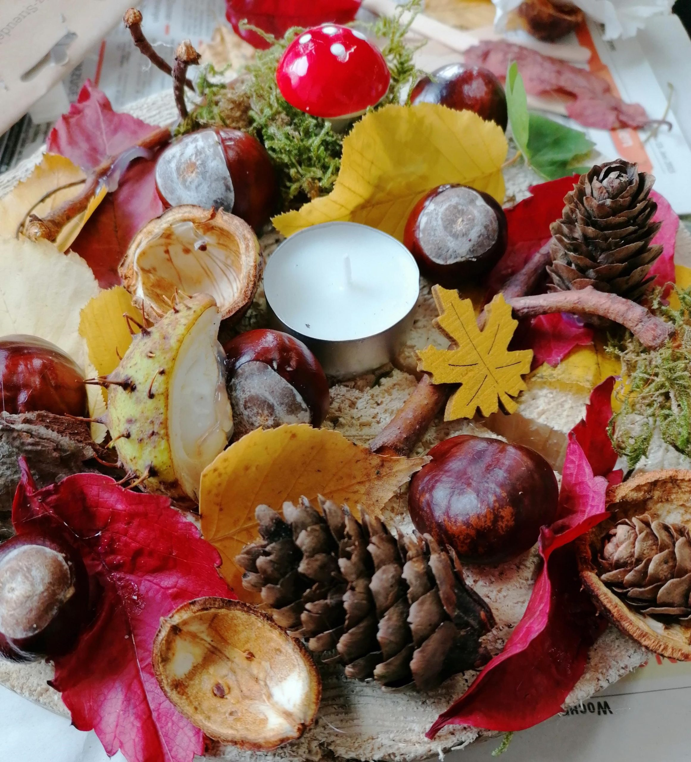 Read more about the article Der Herbst ist da